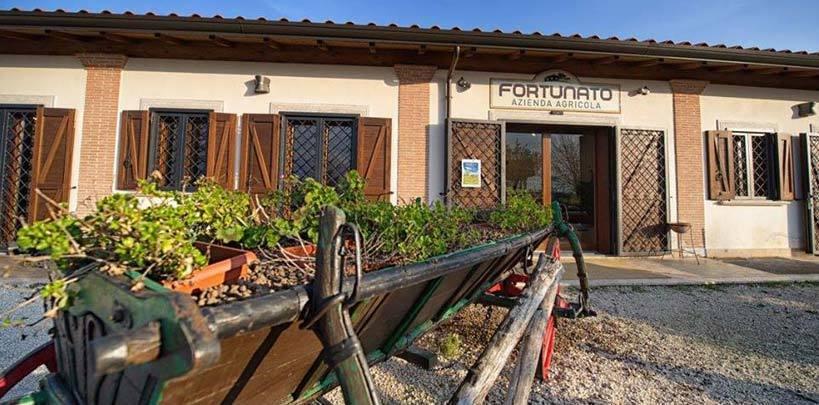 Azienda Agricola Fortunato un nuovo partner commerciale per I Cugini Dupon